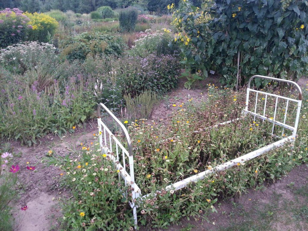 botanikos sodas 8